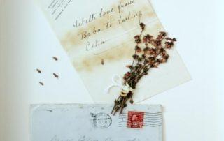 letter | WAR Flowers - A touring art exhibition | www.warflowers.ca