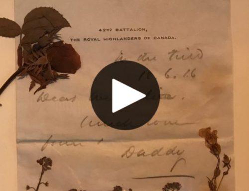 Fleurs d'armes, une exposition pour commémorer le centenaire de l'Armistice (In French)