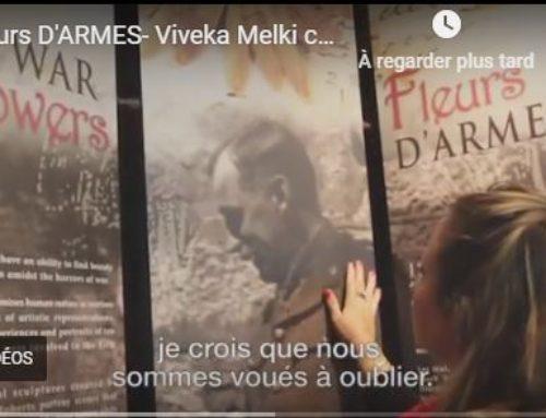 War Flowers exhibit evokes emotional impact of WWI
